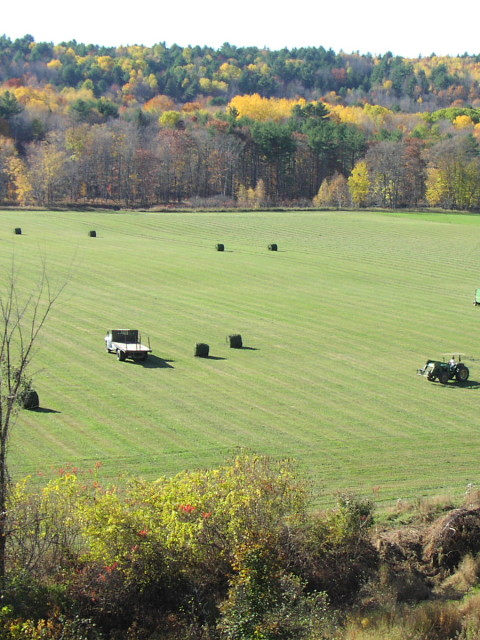 Bailey Hill Farm brings in a hay crop on a fall day, Paul Hersey. Courtesy of USDA Natural Resources Conservation Service in Maine.